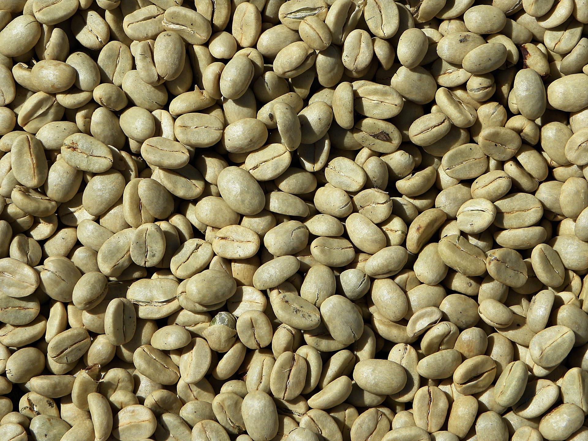 cafè verde